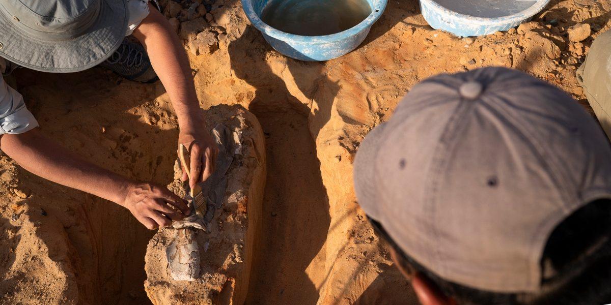 INFINITI QX Series hunt for fossils in Gobi Desert