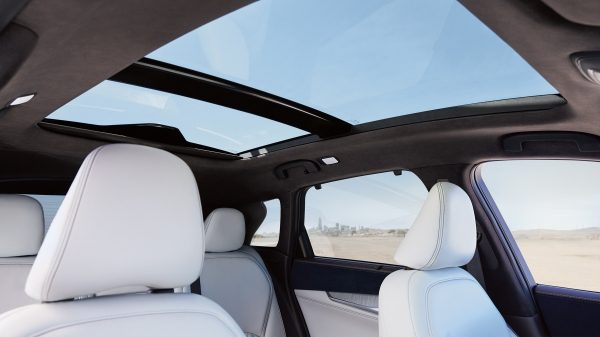 2019 INFINITI QX50 Dual Panel Moonroof